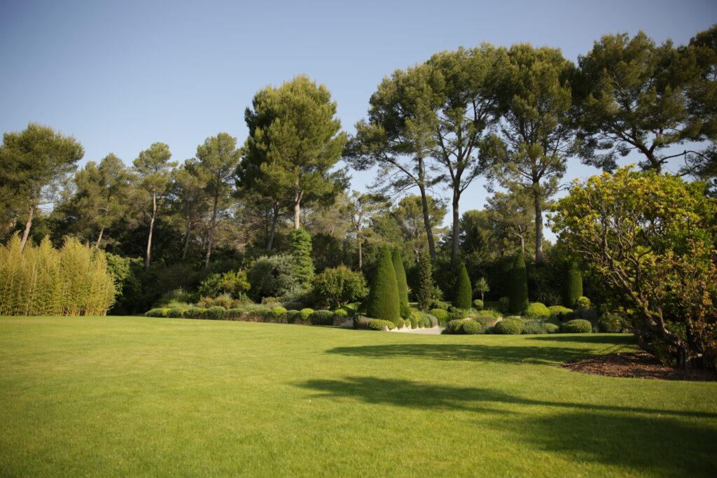 Martin Martin paysages - jardin de provence