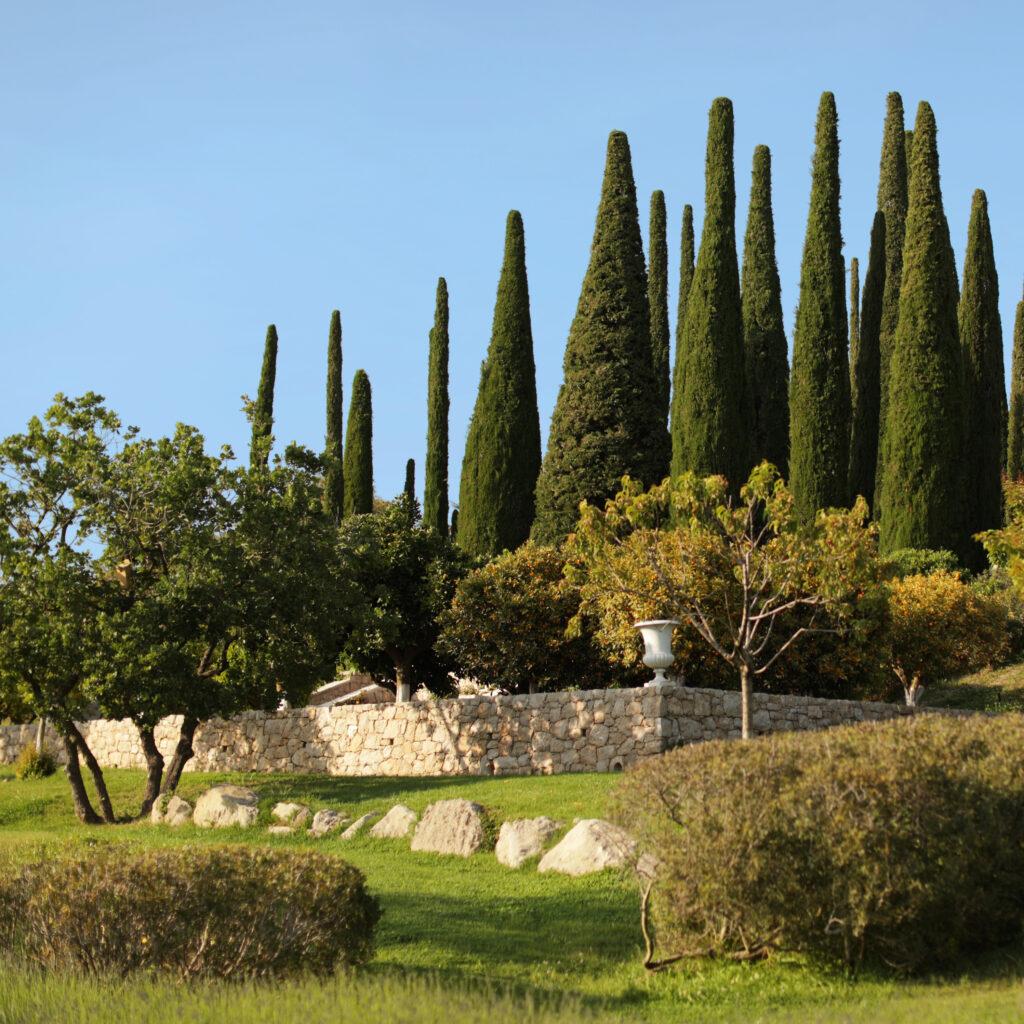 Martin Martin paysages - conception jardin - vue d'ensemble