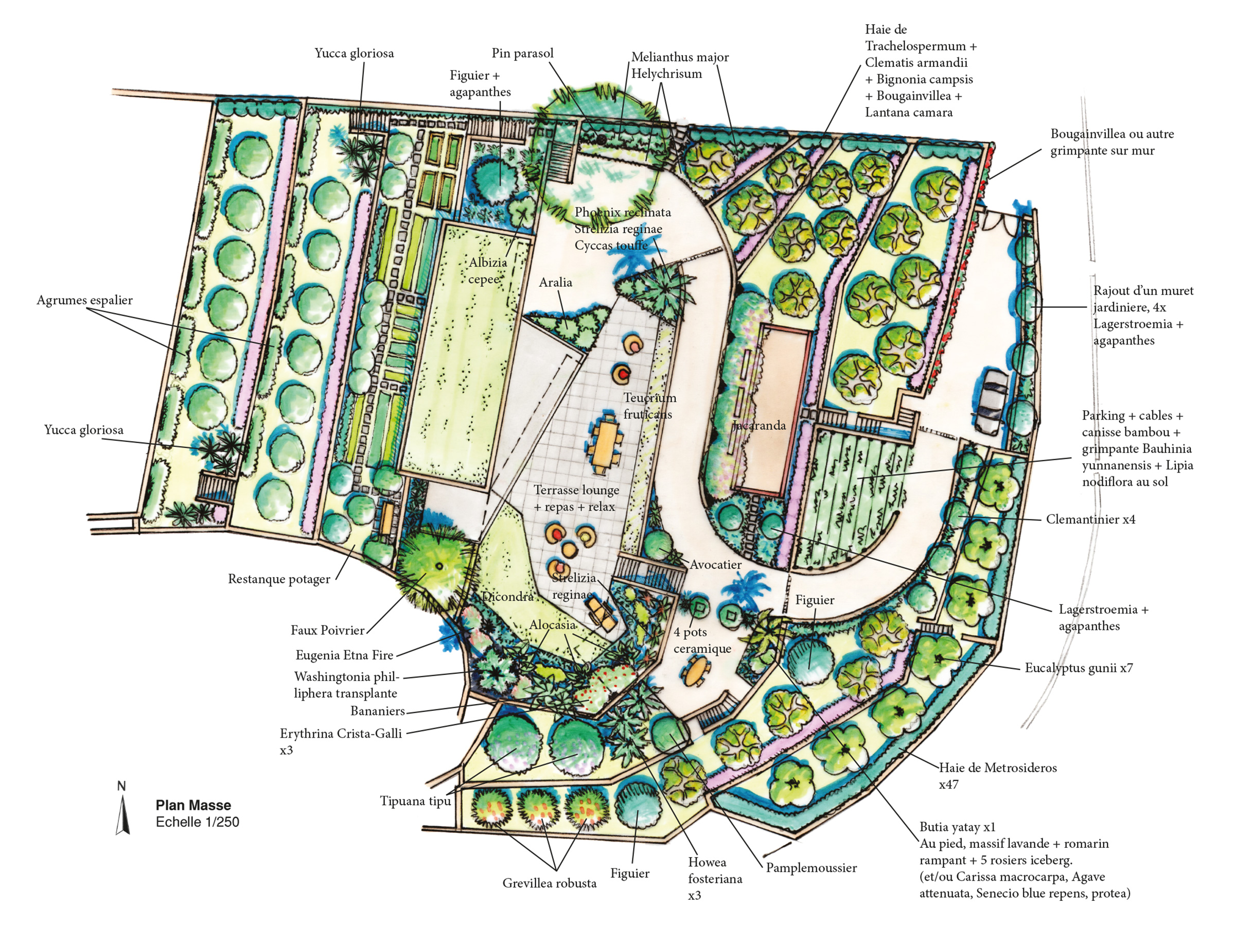 Martin Martin paysages - conception jardin - dessin