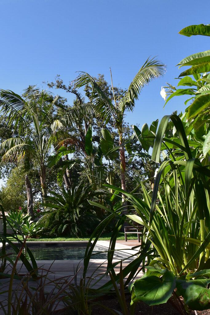 Martin Martin paysages - Jardin végétal