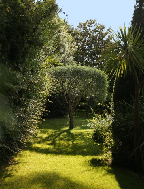 Martin Martin paysages - jardin