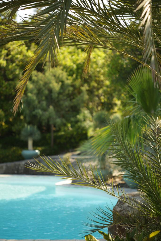 Martin Martin paysages - jardin de la Riviera - piscine