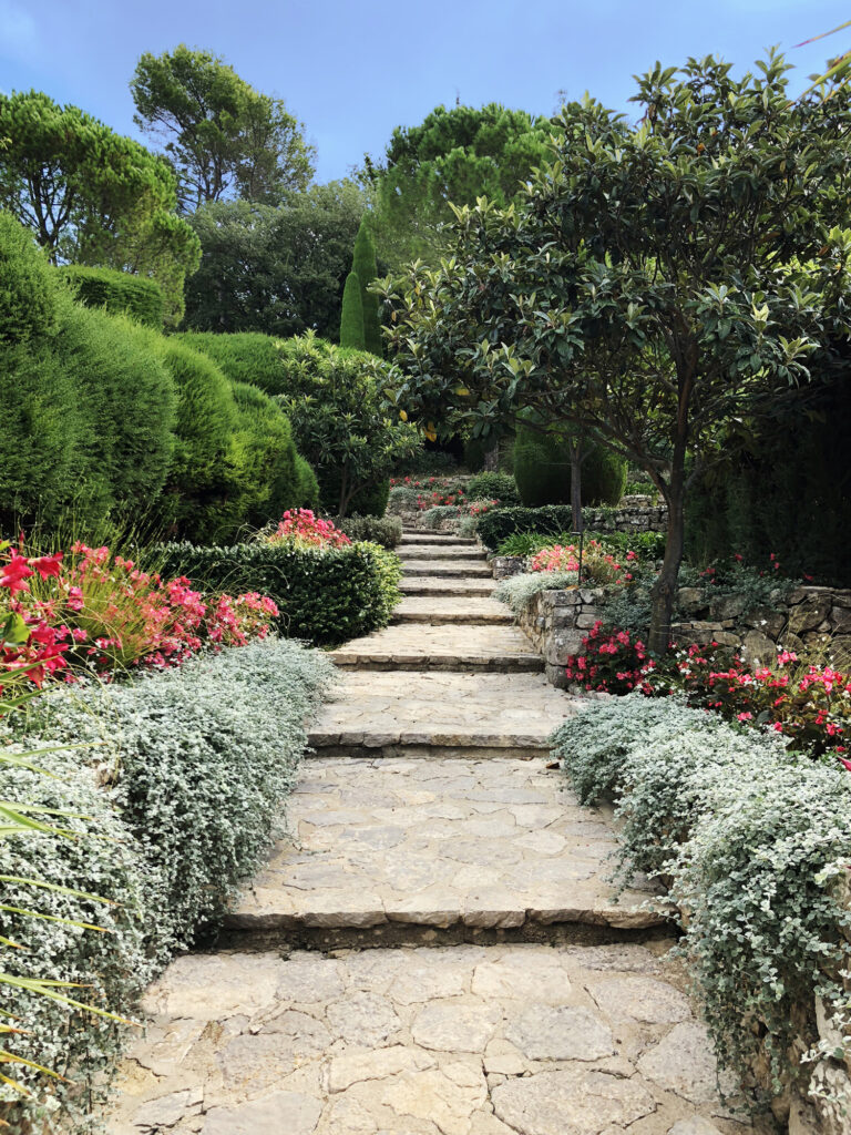 Martin Martin paysages - jardin provençal - allée