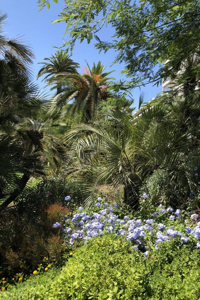 Martin Martin paysages - Jardin de la Riviera