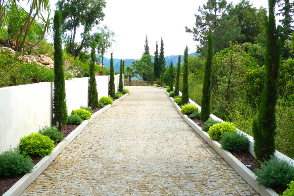 Martin Martin paysages - jardin contemporain - entrée